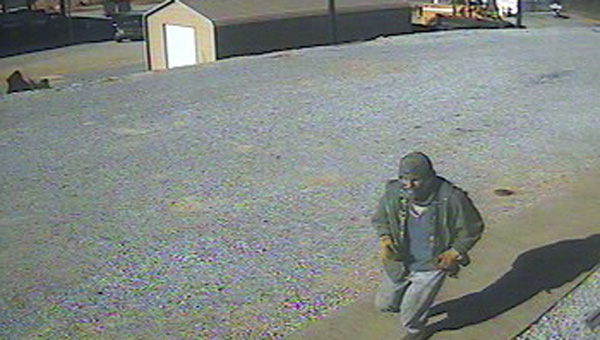A male suspect was seen in surveillance cameras wearing a hooded green jacket stealing catalytic converters from the vehicles parked at the road department.