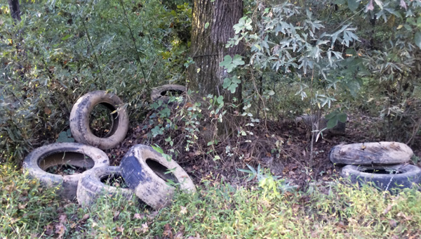 Tires were also found on County Road 8.  (Contributed)