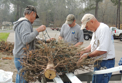 All tied up: Volunteers attempt to remove lights from Christmas trees before they are dropped in the lake.