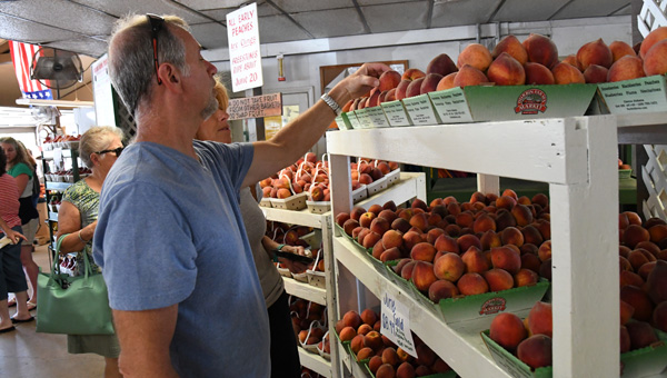 Peach purchase: Arnold and Stacey Moeller of Milton, Fla. purchase peaches from Durbin Farms Market in Clanton on Friday, the day the business declared the peach season open in Chilton County. (Photos by Stephen Dawkins)